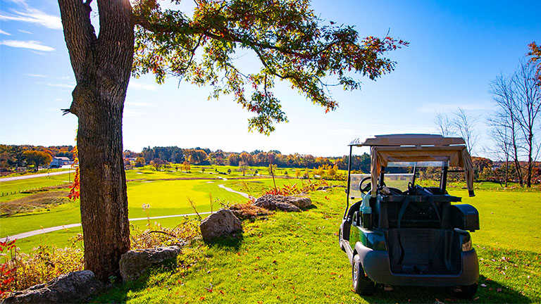 Golf cart parked overlooking green and fairway